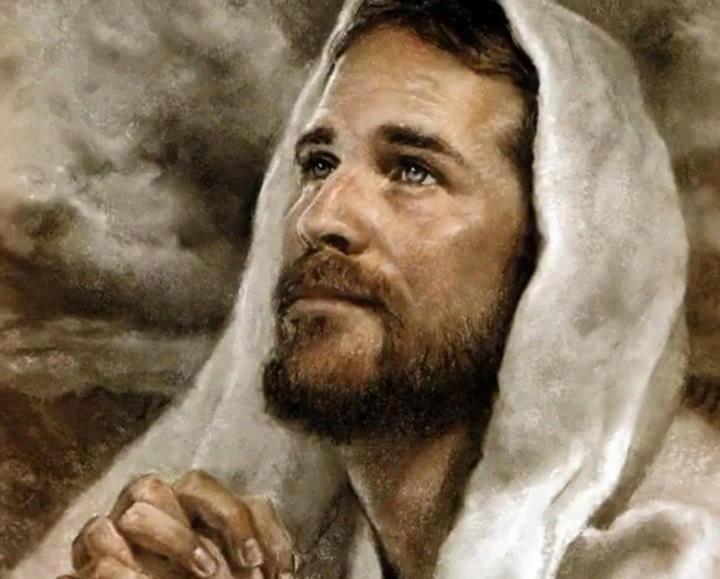 Gesù volto mio