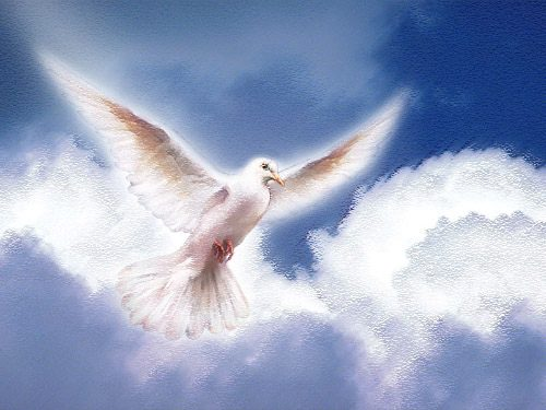 Corona allo Spirito Santo per chiedere doni e grazie