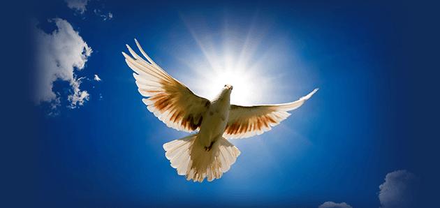 Popolare Potente coroncina allo Spirito Santo per ottenere una grazia | il  LB07