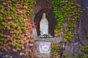Oggi inizia la Novena alla Madonna di Lourdes…puoi pregare qui tutti i nove giorni