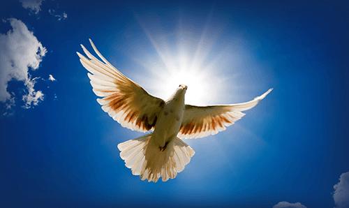Potente coroncina allo Spirito Santo per ottenere una grazia