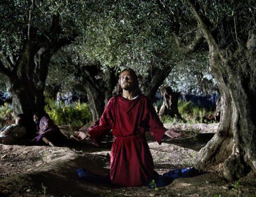 Devozione a Gesù: la coroncina del Signore agonizzante nel Getsemani