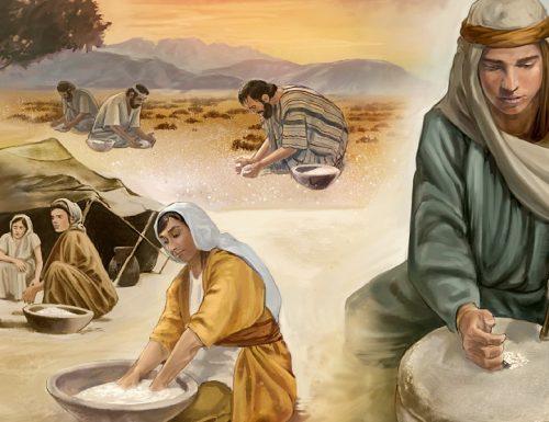 Che cos'è la manna nella Bibbia?