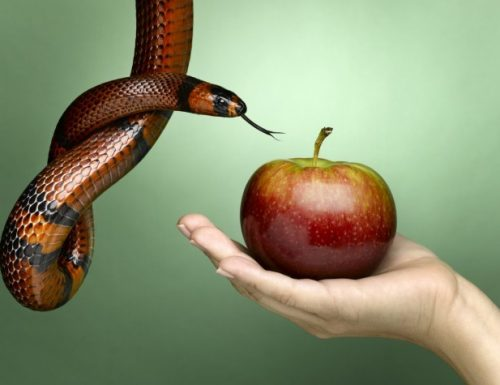 Come resistere alle tentazioni e diventare più forti