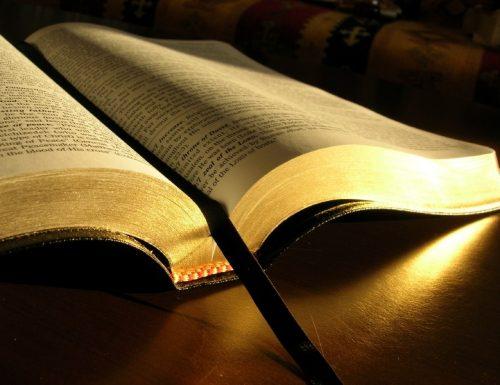 8 cose da amare della tua Bibbia