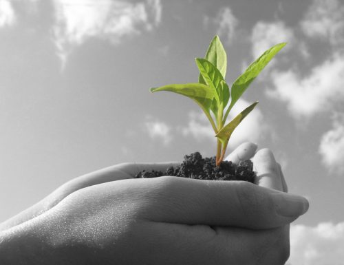 4 elementi essenziali per la crescita spirituale