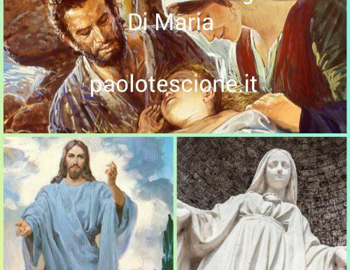 مډونا ته وقف: د مریم ماشومانو جمع کول