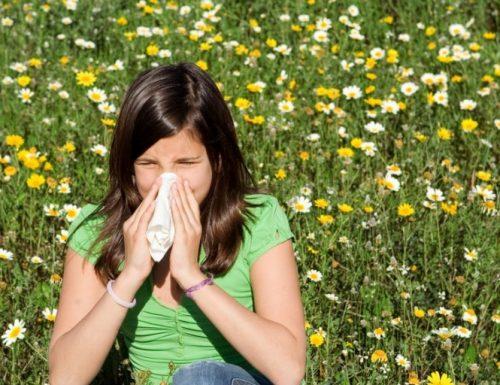Cosa sono le allergie