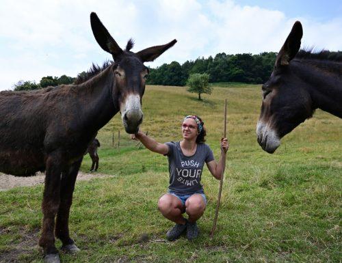 In Italia cresce il numero dei giovani che sceglie la vita di campagna
