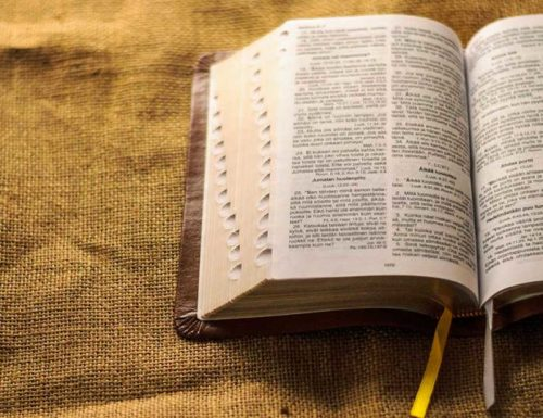 Why did God give us the psalms? How can I start praying the psalms?