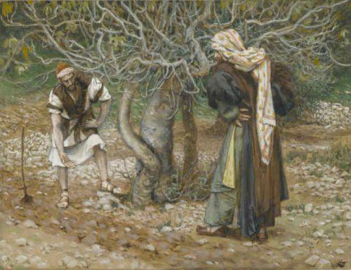 """Rifletti, oggi, se ti senti come se avessi bisogno di permettere a Gesù di """"coltivare il terreno"""" intorno a te"""