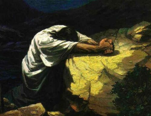 Rifletti sulla tua chiamata a seguire Cristo e ad agire come Suo apostolo nel mondo