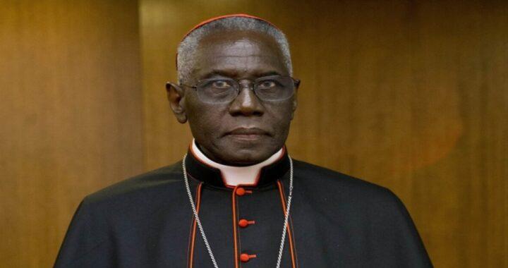 vaticano pandemia