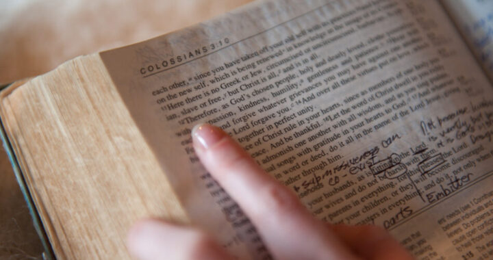 """Cosa significa """"Bibbia"""" e come ha preso quel nome?"""