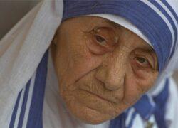 カルカッタのマザーテレサへの献身