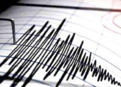 Terremoto a Napoli,
