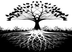 Pokok kehidupan