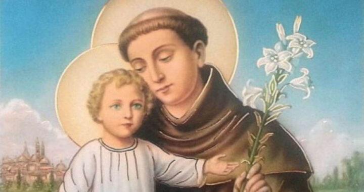 6 cose che (forse) non sai su Sant'Antonio di Padova