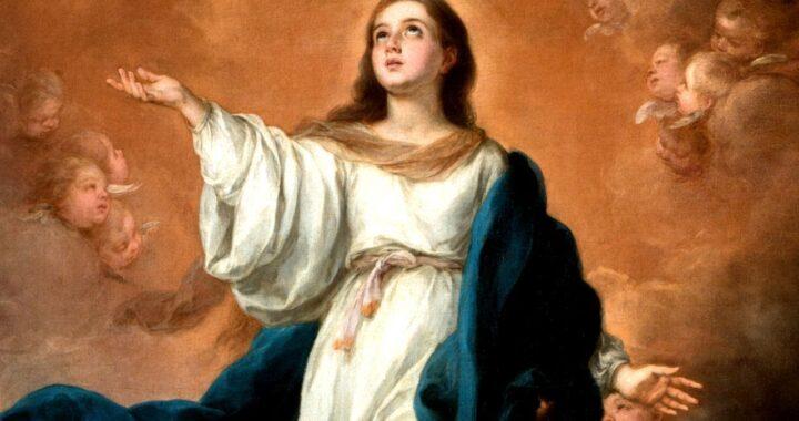 Oggi è il compleanno della Beata Vergine, perché è importante festeggiarlo